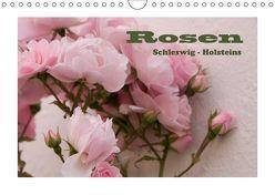 Rosen Schleswig-Holsteins (Wandkalender 2019 DIN A4 quer) von Kügler,  Antje