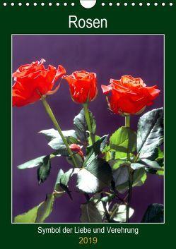 Rosen – Symbol der Liebe und Verehrung (Wandkalender 2019 DIN A4 hoch) von Reupert,  Lothar