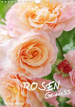 Rosengenuss (Wandkalender 2019 DIN A4 hoch) von Kruse,  Gisela