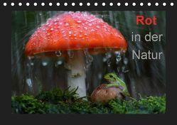 Rot in der Natur (Tischkalender 2019 DIN A5 quer) von Bachmeier,  Günter