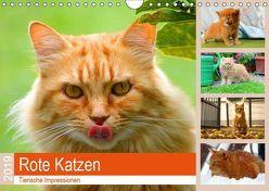 Rote Katzen 2019. Tierische Impressionen (Wandkalender 2019 DIN A4 quer) von Lehmann (Hrsg.),  Steffani