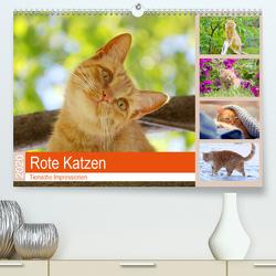 Rote Katzen 2020. Tierische Impressionen (Premium, hochwertiger DIN A2 Wandkalender 2020, Kunstdruck in Hochglanz) von Lehmann (Hrsg.),  Steffani