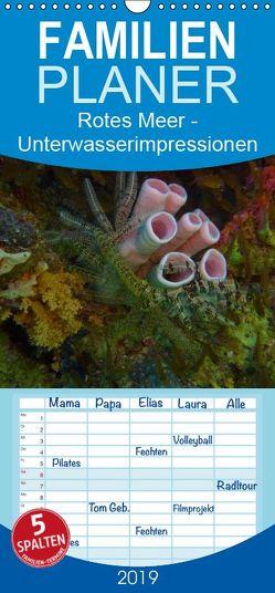 Rotes Meer – Unterwasserimpressionen – Familienplaner hoch (Wandkalender 2019 , 21 cm x 45 cm, hoch) von Eberschulz,  Lars