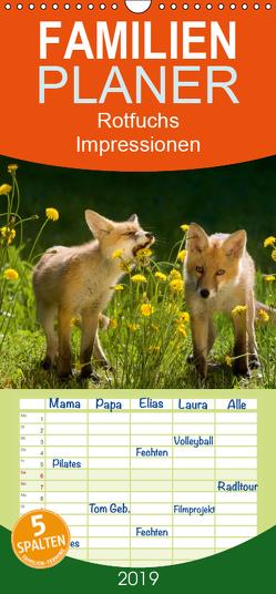 Rotfuchs – Impressionen – Familienplaner hoch (Wandkalender 2019 , 21 cm x 45 cm, hoch) von Danegger,  Susanne