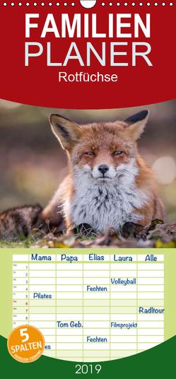 Rotfüchse – Familienplaner hoch (Wandkalender 2019 , 21 cm x 45 cm, hoch) von van Hauten,  Markus