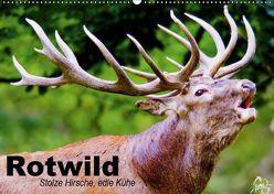 Rotwild. Edle Hirsche, stolze Kühe (Wandkalender 2019 DIN A2 quer) von Stanzer,  Elisabeth