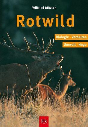 Rotwild von Bützler,  Wilfried