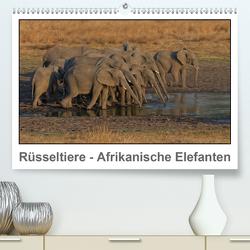 Rüsseltiere – Afrikanische Elefanten (Premium, hochwertiger DIN A2 Wandkalender 2021, Kunstdruck in Hochglanz) von Wolf,  Gerald