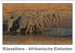 Rüsseltiere – Afrikanische Elefanten (Wandkalender 2021 DIN A2 quer) von Wolf,  Gerald