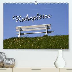 Ruheplätze (Premium, hochwertiger DIN A2 Wandkalender 2021, Kunstdruck in Hochglanz) von Berg,  Martina