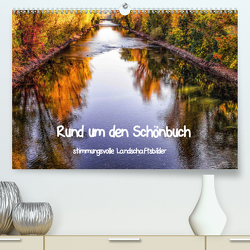 Rund um den Schönbuch (Premium, hochwertiger DIN A2 Wandkalender 2020, Kunstdruck in Hochglanz) von Pfeifer,  Romy
