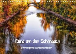 Rund um den Schönbuch (Wandkalender 2020 DIN A4 quer) von Pfeifer,  Romy