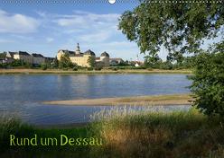 rund um Dessau (Wandkalender 2019 DIN A2 quer) von Gronostay,  Norbert