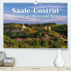 Saale-Unstrut – Region aus Wein und Stein (Premium, hochwertiger DIN A2 Wandkalender 2020, Kunstdruck in Hochglanz) von LianeM