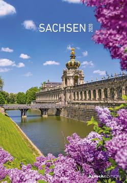 Sachsen 2020 – Bildkalender (24 x 34) – Landschaftskalender – Regionalkalender – Wandkalender von ALPHA EDITION