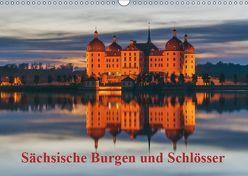 Sächsische Burgen und Schlösser (Wandkalender 2019 DIN A3 quer) von Kirsch,  Gunter