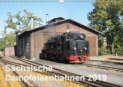 Sächsische Dampfeisenbahnen 2019 (Wandkalender 2019 DIN A3 quer)