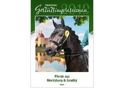 Sächsische Gestütsimpressionen 2019 von Uhlenbrok,  Beate