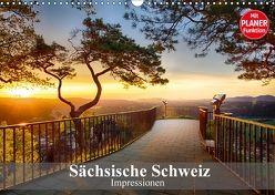 Sächsische Schweiz – Impressionen (Wandkalender 2018 DIN A3 quer) von Meutzner,  Dirk