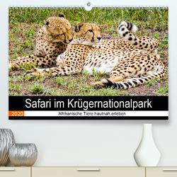 Safari im Krügernationalpark (Premium, hochwertiger DIN A2 Wandkalender 2020, Kunstdruck in Hochglanz) von Kärcher,  Linde