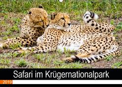 Safari im Krügernationalpark (Wandkalender 2019 DIN A2 quer) von Kärcher,  Linde