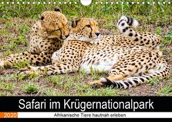 Safari im Krügernationalpark (Wandkalender 2020 DIN A4 quer) von Kärcher,  Linde