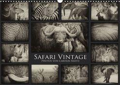 Safari Vintage (Wandkalender 2018 DIN A3 quer) von Barth,  Carolin