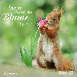 Sag es durch die Blume 2022 – Hamster, Eichhörnchen, Zwiesel in Nahaufnahme – Wandkalender mit Spiralbindung – DUMONT Quadratformat 24 x 24 cm von Rad,  Julian