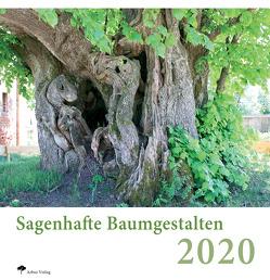 Sagenhafte Baumgestalten 2020 von Peter,  Klug