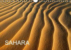 SAHARA (Wandkalender 2019 DIN A4 quer) von / D. Moser,  McPHOTO
