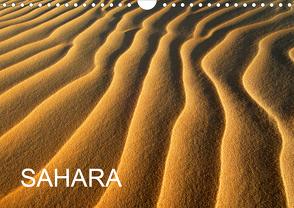 SAHARA (Wandkalender 2020 DIN A4 quer) von / D. Moser,  McPHOTO