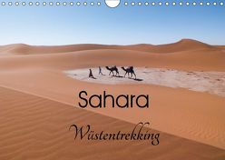 Sahara Wüstentrekking (Wandkalender 2019 DIN A4 quer) von Görig,  Christine