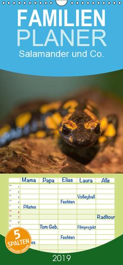 Salamander und Co. – Familienplaner hoch (Wandkalender 2019 , 21 cm x 45 cm, hoch) von Di Chito,  Ursula