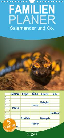 Salamander und Co. – Familienplaner hoch (Wandkalender 2020 , 21 cm x 45 cm, hoch) von Di Chito,  Ursula