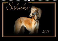 Saluki 2019 (Wandkalender 2019 DIN A2 quer) von Redecker,  Andrea
