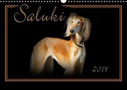 Saluki 2019 (Wandkalender 2019 DIN A3 quer) von Redecker,  Andrea