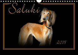 Saluki 2019 (Wandkalender 2019 DIN A4 quer) von Redecker,  Andrea