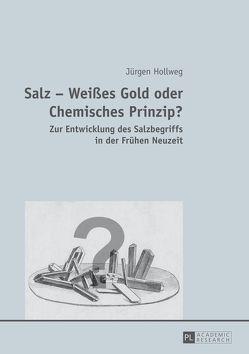 Salz – Weißes Gold oder Chemisches Prinzip? von Hollweg,  Jürgen
