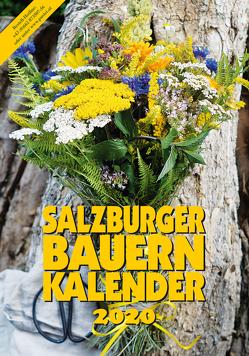 Salzburger Bauernkalender 2020 von Steiner,  Gertraud