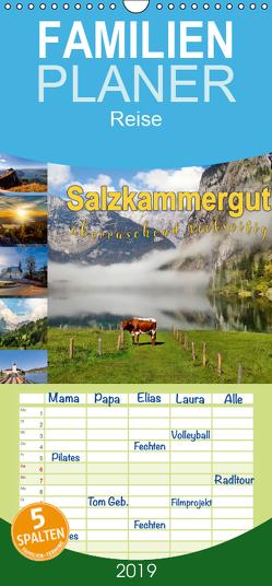 Salzkammergut, überraschend vielseitig – Familienplaner hoch (Wandkalender 2019 , 21 cm x 45 cm, hoch) von Roder,  Peter