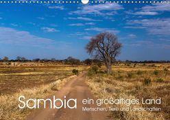 Sambia – ein großartiges Land (Wandkalender 2019 DIN A3 quer)