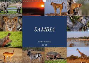 Sambia – wundervolle Wildnis (Wandkalender 2018 DIN A3 quer) von Woyke,  Wibke