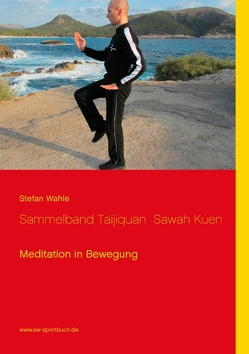 Sammelband Taijiquan  Sawah Kuen von Wahle,  Stefan