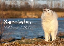 Samojeden – Liebenswerte Fellkugeln (Wandkalender 2019 DIN A2 quer) von Annett Mirsberger,  Tierpfoto