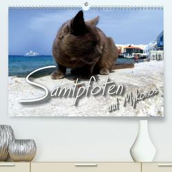 SAMTPFOTEN auf Mykonos (Premium, hochwertiger DIN A2 Wandkalender 2020, Kunstdruck in Hochglanz) von Bleicher,  Renate