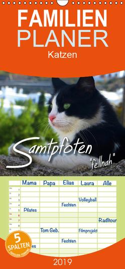 """SAMTPFOTEN """"fellnah"""" – Familienplaner hoch (Wandkalender 2019 , 21 cm x 45 cm, hoch) von Bleicher,  Renate"""