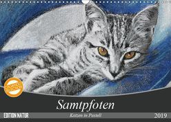 Samtpfoten – Katzen in Pastell (Wandkalender 2019 DIN A3 quer) von Felix,  Uschi
