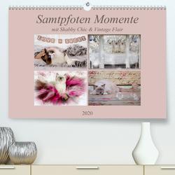 Samtpfoten Momente mit Shabby Chic & Vintage Flair (Premium, hochwertiger DIN A2 Wandkalender 2020, Kunstdruck in Hochglanz) von Reiß-Seibert,  Marion