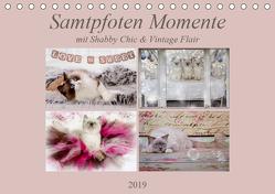 Samtpfoten Momente mit Shabby Chic & Vintage Flair (Tischkalender 2019 DIN A5 quer) von Reiß-Seibert,  Marion