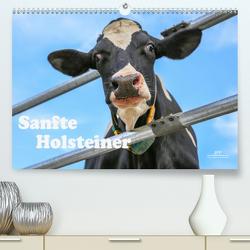 Sanfte Holsteiner (Premium, hochwertiger DIN A2 Wandkalender 2020, Kunstdruck in Hochglanz) von JF Führer,  Jana